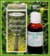 Dr. Milesz Fagyöngy-Galagonya Tinktúra 30 ml